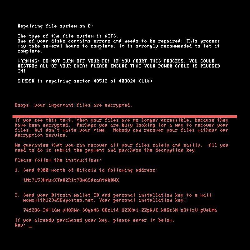 Petya Ransomware Image